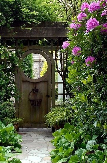 Lovely Garden Gate:  inspiration photo - tall rhododendron plant and bergenia cordiflora (?) in the foreground.     photo from hometalk.com