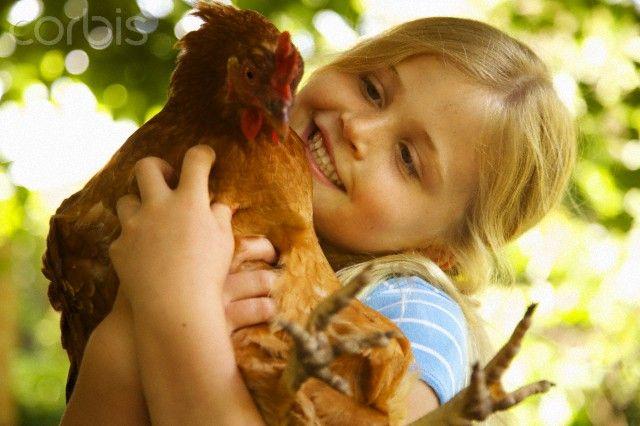 Smiling Girl Hugging Chicken - Chicken Houses