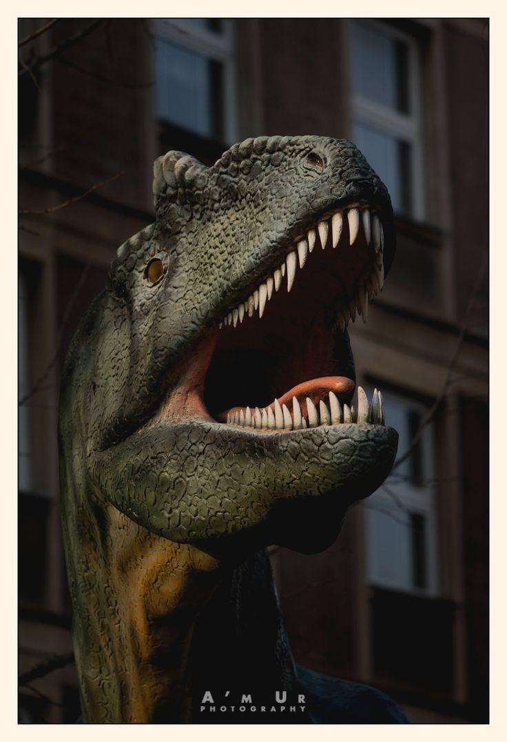 Allosaurus ©Arek Uriasz