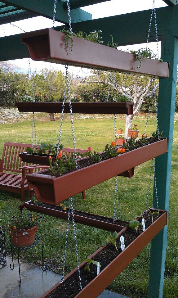 Hanging garden. I saw something similar on Pinterest but I couldn't figure out…