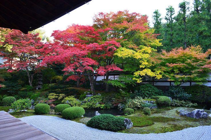 Gozasho Garden at the Sennyū-ji (泉涌寺) temple in Higashiyama-ku in Kyoto, Japan.