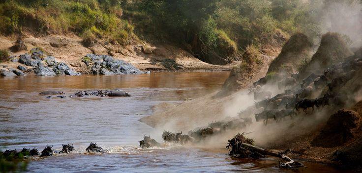 Cruzando el Mara