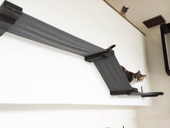 25 parasta ideaa pinterestiss h ngematte katze. Black Bedroom Furniture Sets. Home Design Ideas