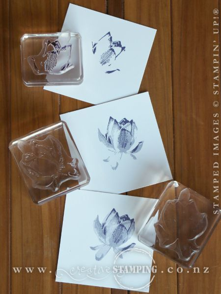 The three flower images in the Lotus Blossom stamp set make up a lovely detailed flower.  For best results, Stampin' Up! recommends stamping the inside petals first (the smallest detailed stamp), then the large textured image, then finish with the solid stamp.  These are stamped in Elegant Eggplant and Wisteria Wonder.  www.creativestamping.co.nz   Stampin' Up!   Sale-A-Bration