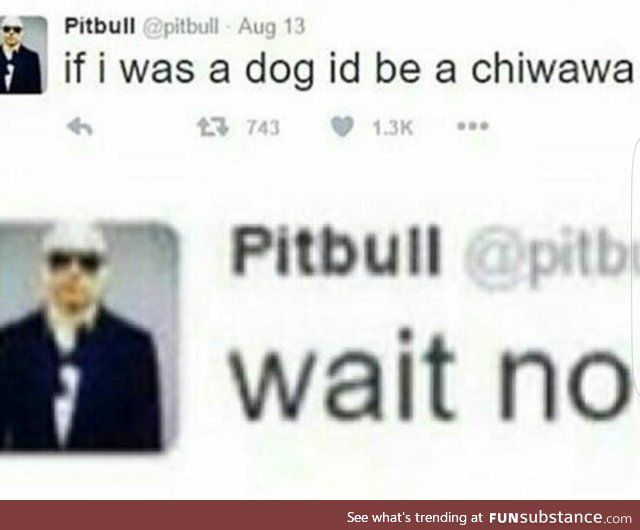 "One time in English my teacher was like ""How do you even spell chihuahua"" and everyone started yelling ""CHI-HUWAH-HUWAH"""