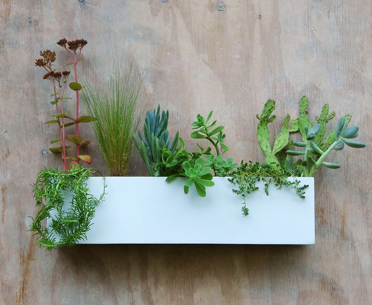 Modern White Succulent Wall Trough Planter (Free Shipping) by UrbanMettle on Etsy