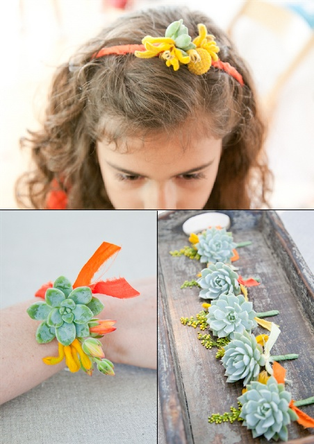 """The light succulents are almost EXACTLY the same color as """"Margarita"""", a Pantone color trend for Spring 2012"""
