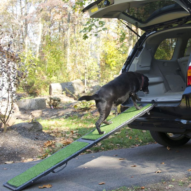Gadgets For a Dog Friendly Road Trip - A car ramp makes all vehicles accessible for senior dogs.
