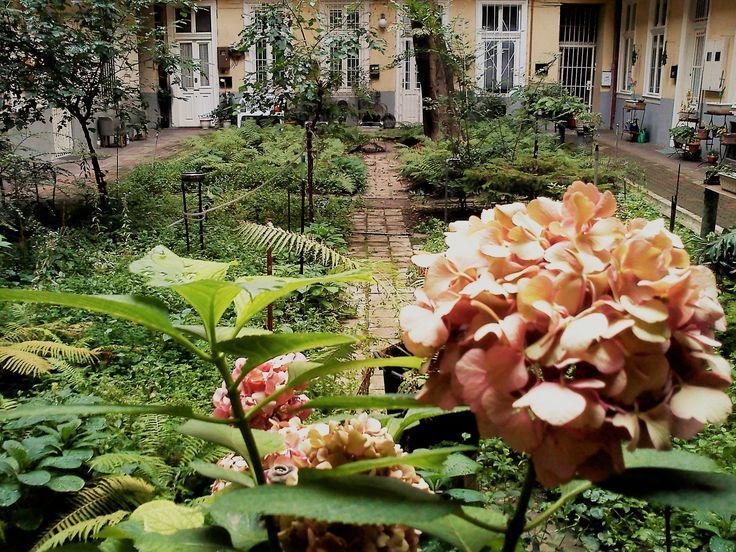 in a garden_Kuci Budapest