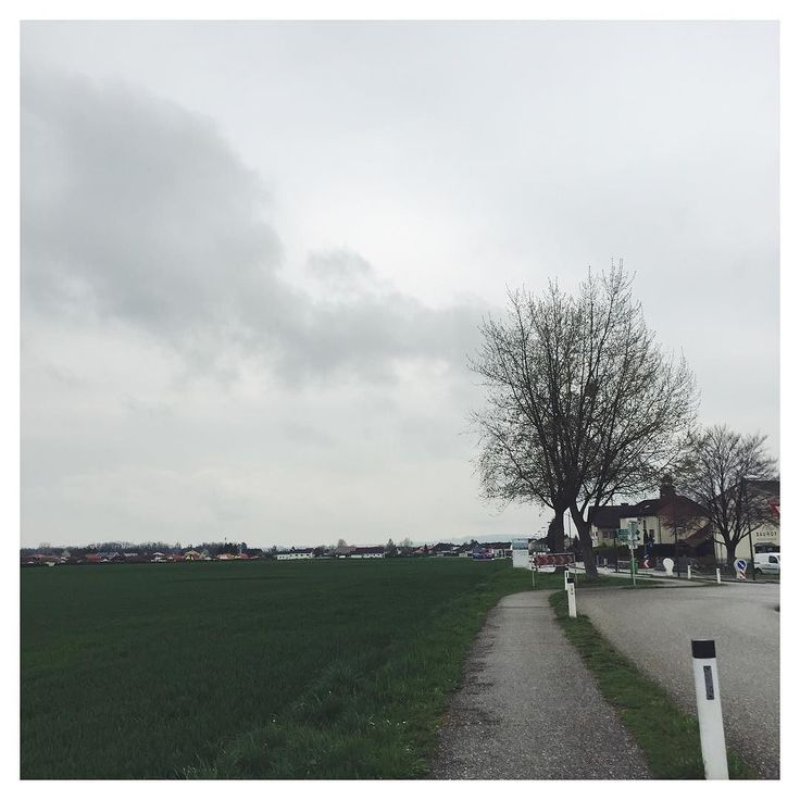 Graues Wetter in #Österreich  #grey #weather in #austria  #graueswetter #wetter #greyweather #vscoat #vsco #vscocam #vscogood #vscodaily #vscolife #regen #rainyday #rainy #rain #baum #april #aprilwetter #squaready #tree #landscape #landschaft #landscape_lovers #instadaily #clouds #sky by walterslifestyle