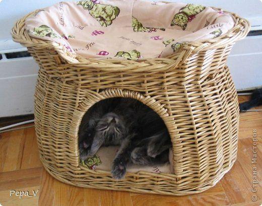 Поделка изделие Плетение Новый кошкин дом Трубочки бумажные фото 9