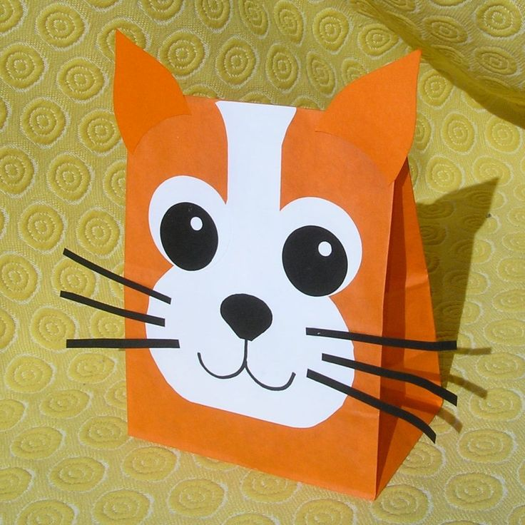 Cat Treat Sacks - Kitten Kitty Farm Pet Theme Birthday Party Favor Bags by…