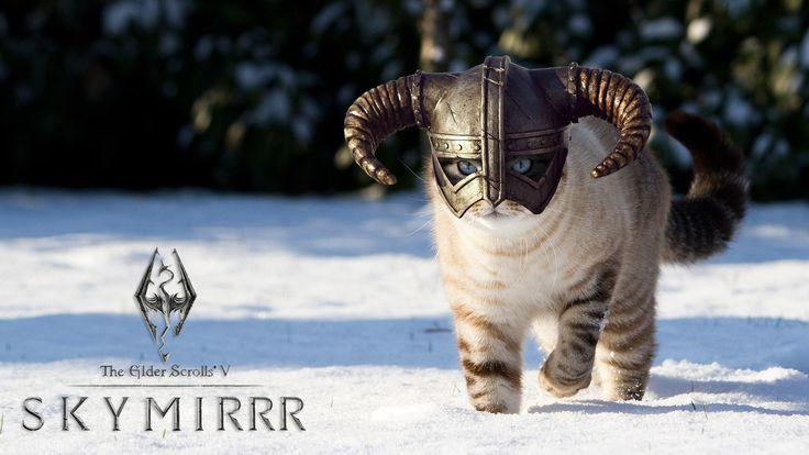Skymirr? #Cat #Skyrim via Reddit user sealosam