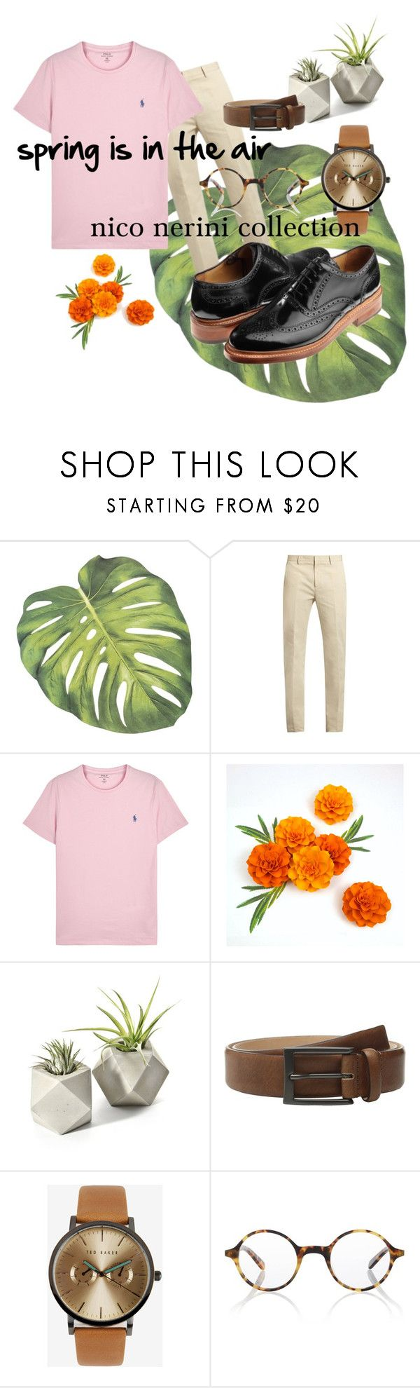 spring is in the air by nico-nerini on Polyvore featuring Polo Ralph Lauren, Calvin Klein Collection, Ted Baker, Finlay & Co., Trafalgar, men's fashion and menswear