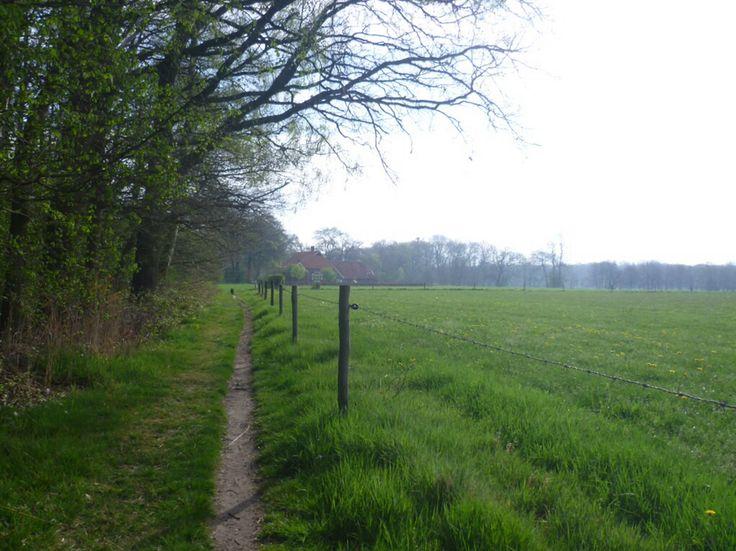 2014-04-06 Mooi wandelpad langs weiland richting Stokkumerweg