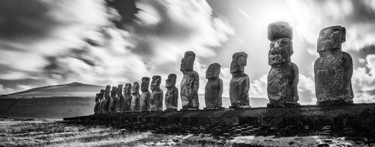 Les statues moaï pourraient avoir contribué à l'appétit vorace en bois des habitants de l'île de Pâques, selon le biologiste et géographe Jared Diamond.