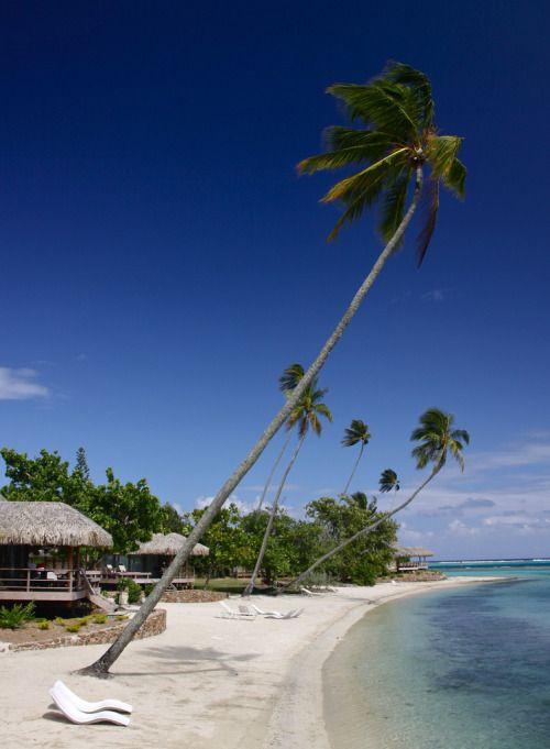 Moorea Island, French Polynesia...