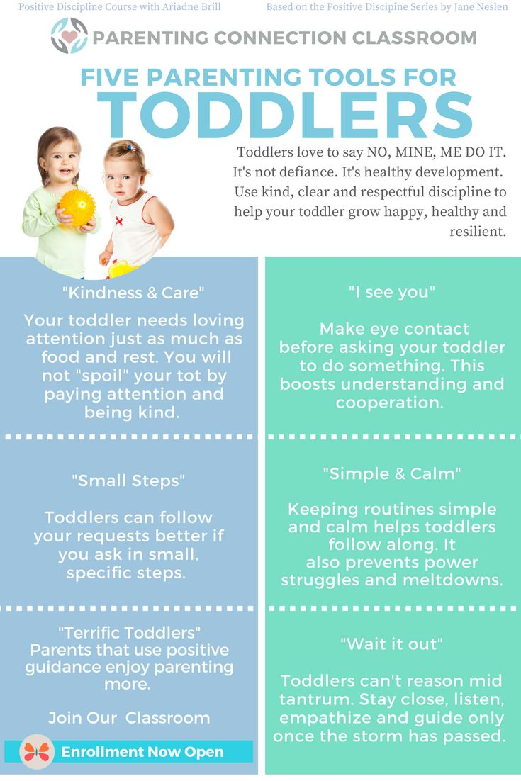 Positive discipline for toddlers - parenting tools to help your family thrive. The Positive parenting connection classroom has many more tools and resources.