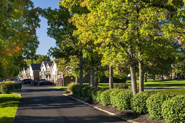 Amenities at Woodridge Apartments for rent in Indianapolis
