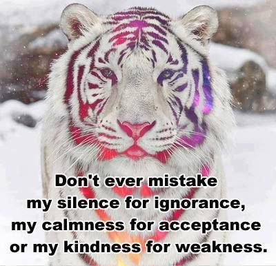 Dont Mistake My Kindness For Weakness Quotes. QuotesGram by @quotesgram