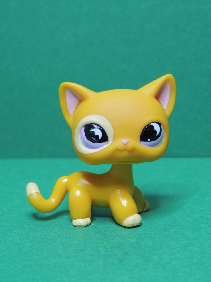 #855 chat short hair european cat orange purple eye LPS Littlest Pet Shop Figure