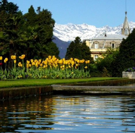 14 best le 10 fioriture pi belle d 39 italia 2017 images on - Giardini di marzo collezione ...