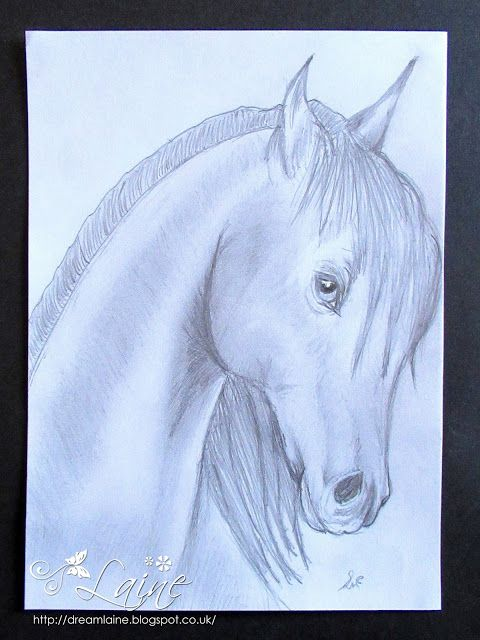 Dream Laine: Monochrome Pencil Horse Sketch! #art #spectrumnoir #pencils #createdbylaine #horse #pony  #nature #drawing #sketching #freehand