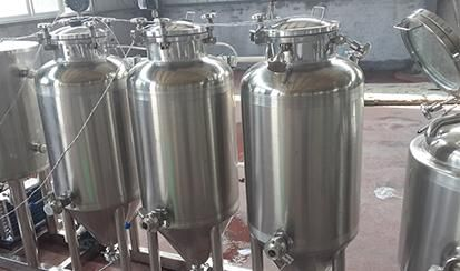 50L Double layers fermenter