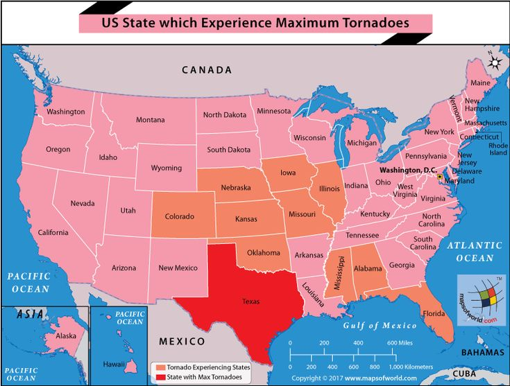 24 best interesting maps images on pinterest cards maps and countries us map highlighting texas gumiabroncs Image collections