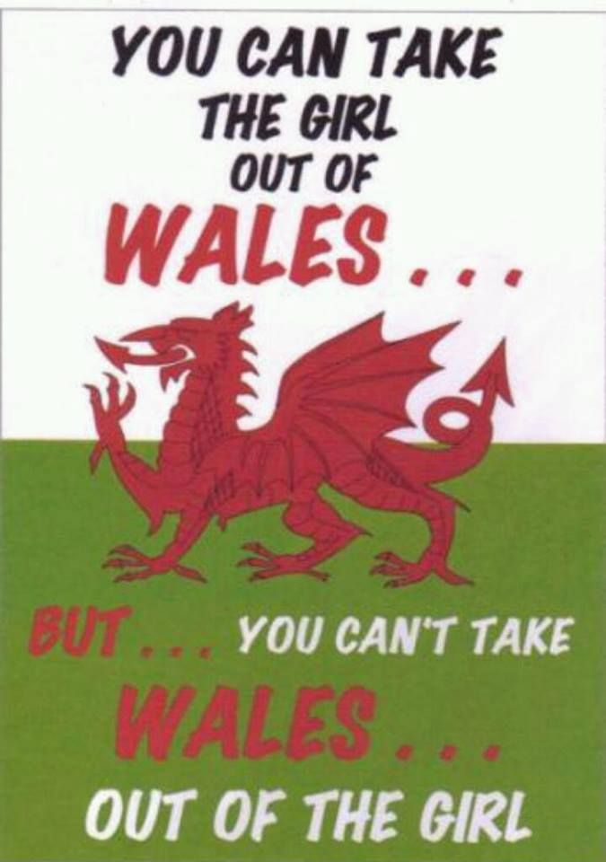 Welsh and proud!! My paternal grandfather was from Wales..I am proud of his heritage...that is also part of mine.