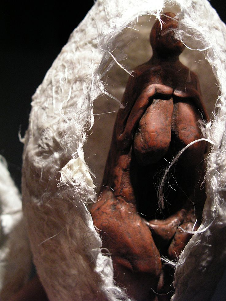 G. Dalli Cani  - Cocoons installation. Mixed media. 2005/2006.