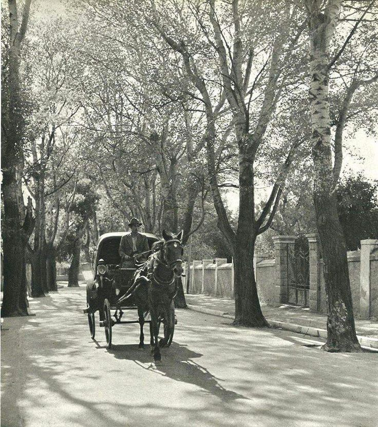 Old Greece. 1930's Kifissia, Kefalari.