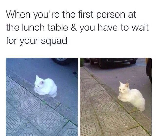When You're the First Person At the Lunch Tableツ #Humor #Funny #Relatable