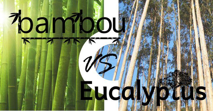 La différence entre la viscose de bambou et le TENCEL® d'eucalyptus
