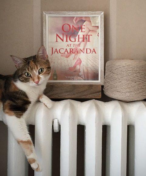 Warning: this novel may contain cats.