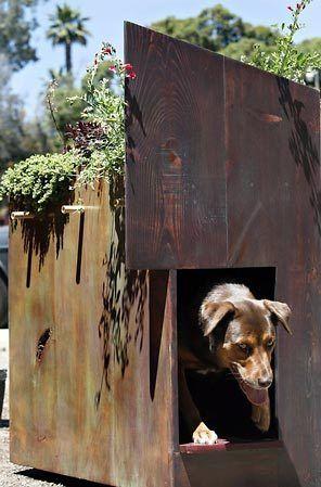 Pet DIY Shelter Planter Cats Dogs