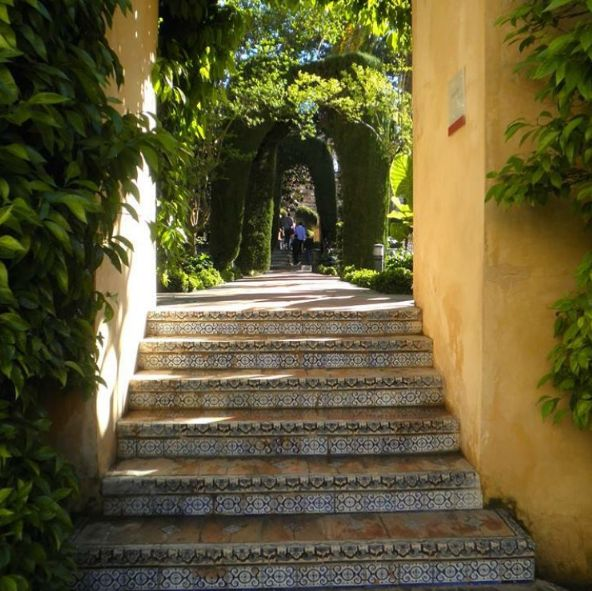 Beautiful #tiles leading to the next #garden room in #Seville #Spain #gardendesign #gardenmaintenance #landscape #stairs