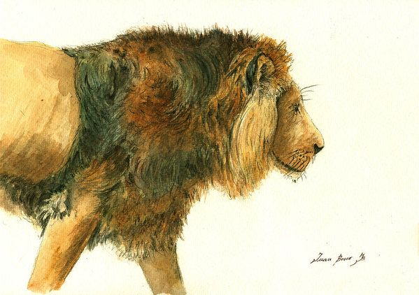 Art & Collectibles Art Print featuring the painting Asiatic Lion by Juan Bosco