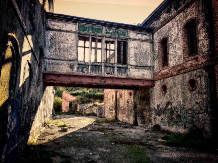 Casa en ruinas #ruinas #house