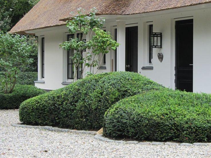 Taxuswolk google zoeken cloud planting wolkbeplanting pinterest verandas and planting - Modern bed volwassen ...