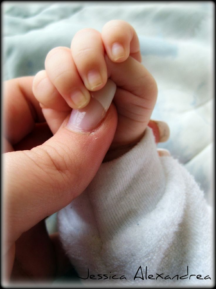 Little baby Hands Awe!