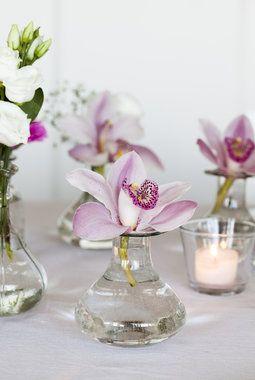 Cymbidium er en vakker blomst å dekorere bordet med.