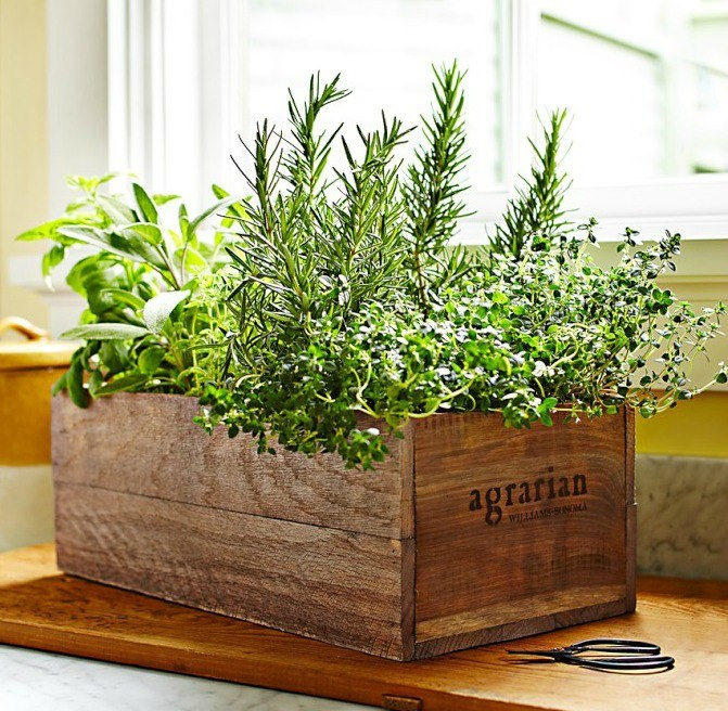 [ Inspiration: Herbs Inside In Wooden Crate Planter ]