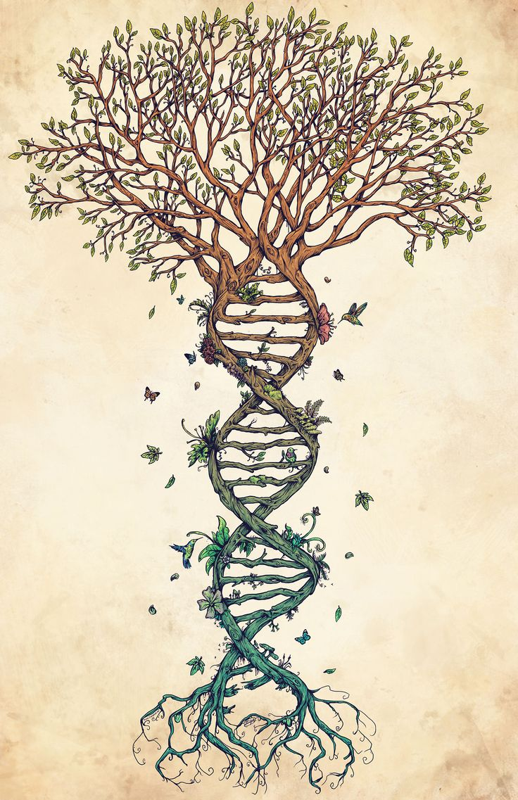 Tree of Life and DNA.