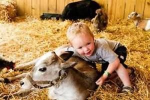Mobile Petting Zoo for Birthdays & Special Events (204) 663-1000