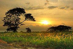 http://www.dzoom.org.es/10-trucos-determinantes-para-conseguir-fotografias-de-paisajes-mas-nitidas/ 10 Trucos Determinantes para Conseguir Fotografías de Paisajes más Nítidas.