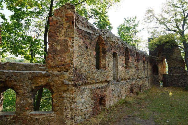 Ruiny Zamku Stary Książ