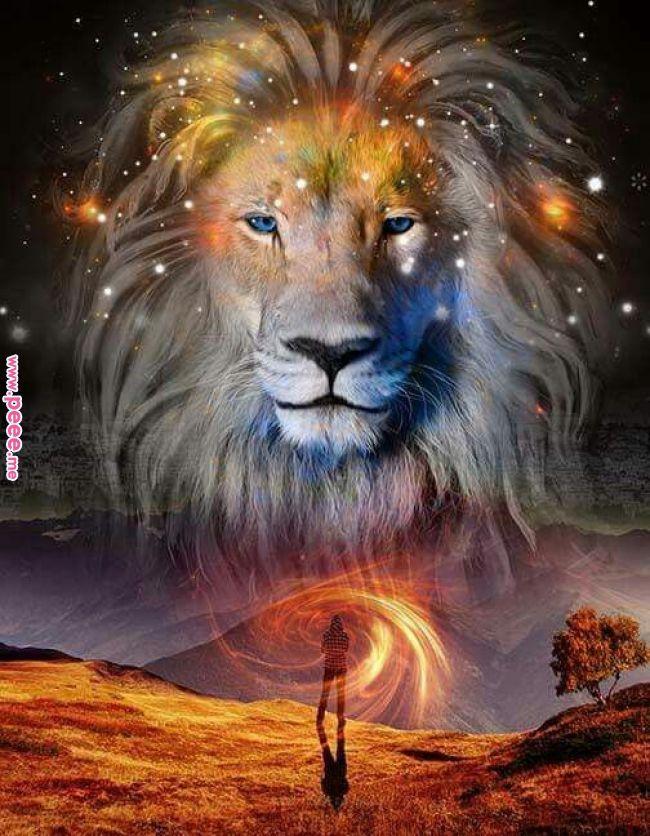 Lion of Judah | God Stuff | Pinterest | Lion of judah, Lion and Prophetic art Lion of Judah | God Stuff | Pinterest |… | Mens lion tattoo,  Lion painting, Lion art