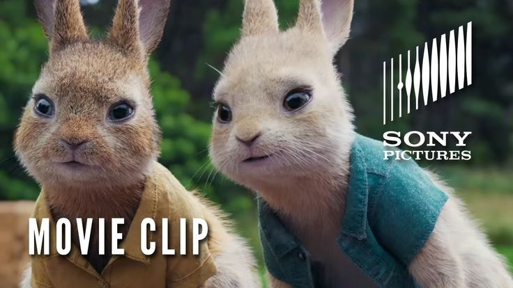 """PETER RABBIT Movie Clip - """"Look Away"""" (In Theaters February 9)"""