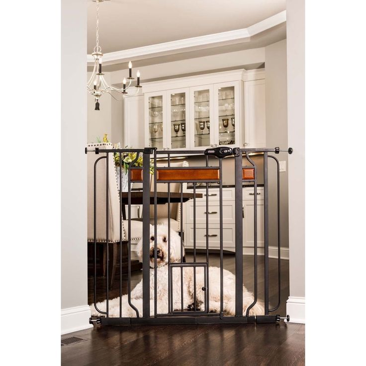 carlson pet products design paw extratall pet gate
